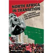 North Africa in Transition: The Struggle for Democracy and Institutions by Fishman,Ben, 9781138653351
