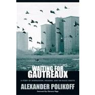 Waiting for Gautreaux : A Story of Segregation, Housing, and the Black Ghetto by Polikoff, Alexander, 9780810123441