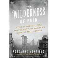The Wilderness of Ruin: A Tale of Madness, Fire, and the Hunt for America's Youngest Serial Killer by Montillo, Roseanne, 9780062273475