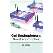 Gel Electrophoresis: Novel Approaches