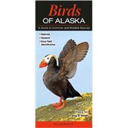 Birds of Alaska by Homel, Greg R., 9781936913503