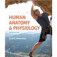 Human Anatomy & Physiology by Amerman, Erin C., 9780134553511