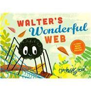 Walter's Wonderful Web by Hopgood, Tim, 9780374303525