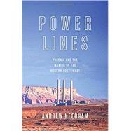 Power Lines by Needham, Andrew, 9780691173542