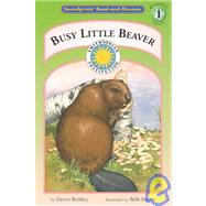 Busy Little Beaver by Bentley, Dawn, 9780756933562