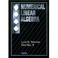 Numerical Linear Algebra by Trefethen, Lloyd N.; Bau, David, 9780898713619