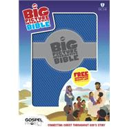 HCSB Big Picture Interactive Bible, Blue/Silver LeatherTouch by Unknown, 9781433613623