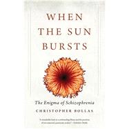 When the Sun Bursts by Bollas, Christopher, 9780300223651