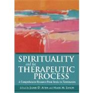 Spirituality and the Therapeutic Process by Aten, Jamie D., 9781433803734