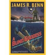 A Blind Goddess by BENN, JAMES R., 9781616953775
