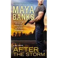After the Storm by Banks, Maya, 9780425263778