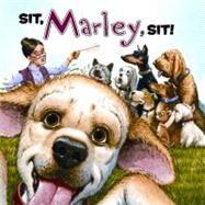 MARLEY SIT MARLEY SIT by GROGAN JOHN, 9780061853807