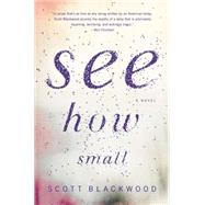 See How Small by Blackwood, Scott, 9780316373807