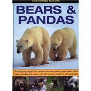 Bears & Pandas by Bright, Michael, 9781861473899