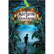 Secrets of Tamarind by Aguiar, Nadia, 9781250103925