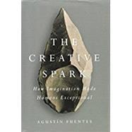 The Creative Spark by Fuentes, Agustín, 9781101983942