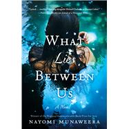 What Lies Between Us A Novel by Munaweera, Nayomi, 9781250043948