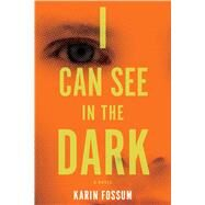 I Can See in the Dark by Fossum, Karin, 9780544483989