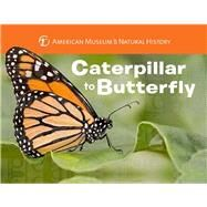 Caterpillar to Butterfly by Unknown, 9781454914068