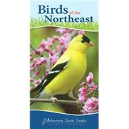 Birds of the Northeast Quick Guide by Tekiela, Stan, 9781591934073