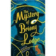 The Mystery of Briony Lodge by Bagchi, David, 9781909954076
