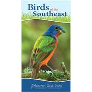 Birds of the Southeast Quick Guide by Tekiela, Stan, 9781591934080