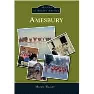 Amesbury by Walker, Margie, 9781467134163