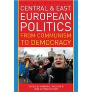 Central and East European Politics by Wolchik, Sharon L.; Curry, Jane Leftwich, 9781442224216
