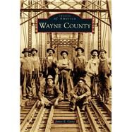 Wayne County by Casto, James E., 9781467134231