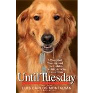 Until Tuesday by Montalvan, Luis Carlos; Witter, Bret, 9781401324292