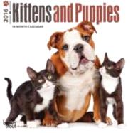 Kittens and Puppies 2016 Calendar by Browntrout Publishers, 9781465044372