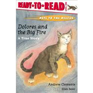Dolores and the Big Fire : A True Story by Andrew Clements; Ellen Beier, 9780689834400