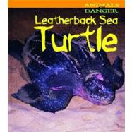 Leatherback Sea Turtle by Theodorou, Rod, 9781588104472
