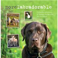Morelabradorable by Jim, Villager, 9781782494478