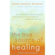 The True Source of Healing: How the Ancient Tibetan Practice of Soul Retrieval Can Transform and Enrich Your Life by Rinpoche, Tenzin Wangyal, 9781401944490