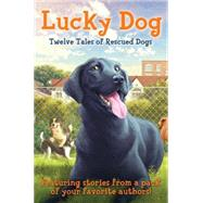 Lucky Dog Twelve Tales of Rescued Dogs by Unknown, 9780545554510