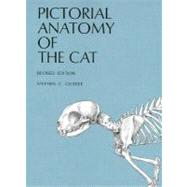 Pictorial Anatomy of the Cat by Gilbert, Stephen G., 9780295954547