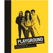 Playground by Zone, Paul; Austen, Jake; Harry, Debbie; Stein, Chris, 9780988174559