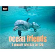 Ocean Friends by KUBUFLACH, ANDREW, 9781578264681