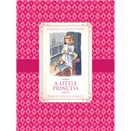 A Little Princess by Rooney , Anne, 9781609924690