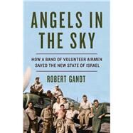 Angels in the Sky by Gandt, Robert, 9780393254778
