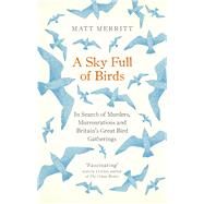 A Sky Full of Birds by Merritt, Matt, 9781846044793
