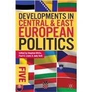 Developments in Central and East European Politics 5 by White, Stephen; Lewis, Paul G.; Batt, Judy, 9780822354826