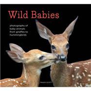 Wild Babies by Scott, Traer, 9781452134864