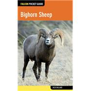 Falcon Pocket Guide: Bighorn Sheep by Ballard, Jack, 9780762784912
