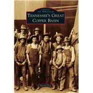 Tennessee's Great Copper Basin by Frye, Harriet, 9781467124942