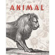Animal A Beastly Compendium by Sueur-Hermel, Val�rie; Mathis, R�mi, 9781474274944