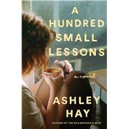 A Hundred Small Lessons A Novel by Hay, Ashley, 9781501165139
