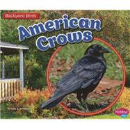 American Crows by Amstutz, Lisa J., 9781491485156