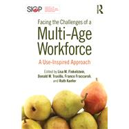 Facing the Challenges of a Multi-Age Workforce: A Use-Inspired Approach by Finkelstein; Lisa M., 9781848725188